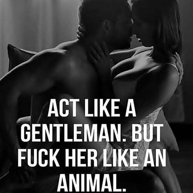 Act like a gentleman master escort boy but fuck you like a sex animal